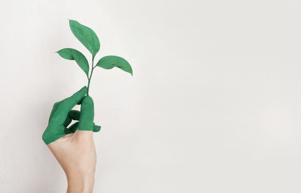 why-you-should-go-green