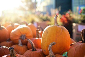 pumpkin-fall-hygge